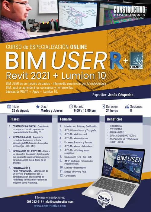 Curso de Especializazión ONLINE BIM USER R + Lumion 10